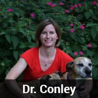 Dr. Conley