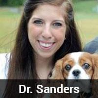 Dr. Sanders