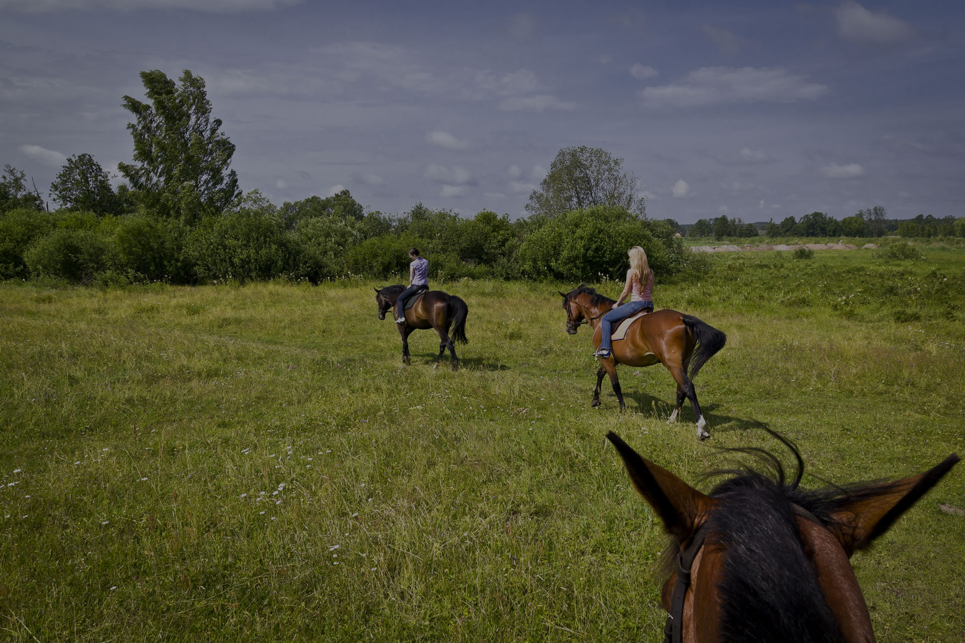 Girls riding horses in the field